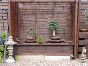 Garden display.