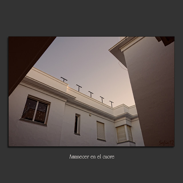 Interior de patio en Sevilla al amanecer, por Sofía Serra