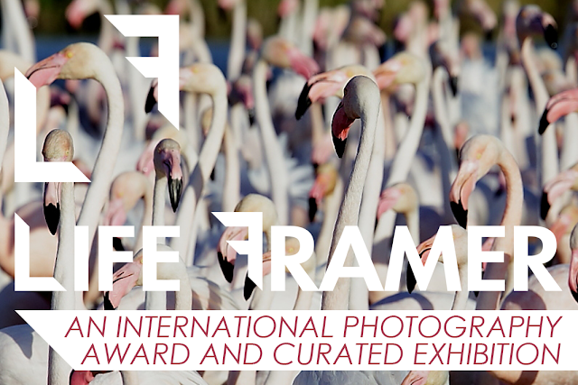 LIFE FRAMER new photo contest judged by Julia Fullerton-Batten (WPO, Hasseblad Master Award)