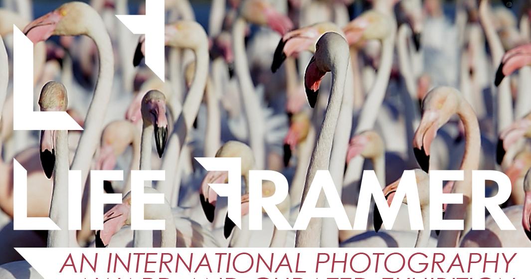 LIFE FRAMER new photo contest judged by Julia Fullerton-Batten (WPO, Hasseblad Master Award)
