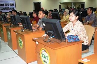 Website Resmi Panselnas Panitia Seleksi Nasional CPNS 2015