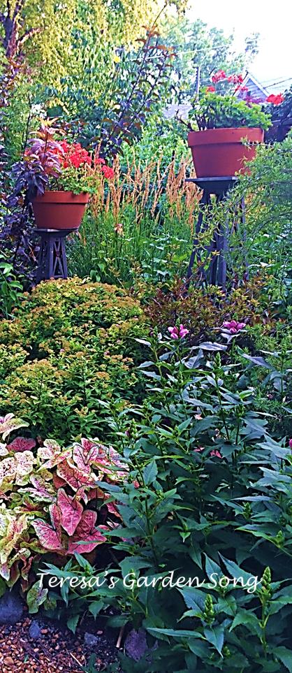 Teresa\'s Garden Song: Container Gardening - Inspiration from Rick ...