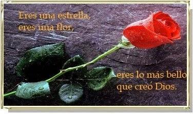 Poemas de Amor con Flores, parte 1
