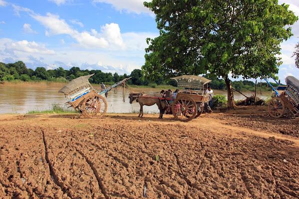 Carros de caballos en Ava (Myanmar)