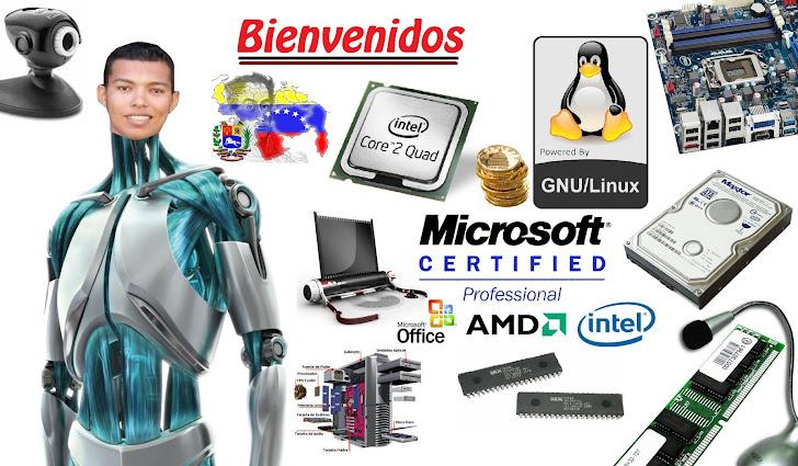 Ing. INFORMÁTICO Pablo Briceño