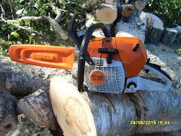 Isotkin puut kaatuvat kunnon kaatosahalla - Tiedustelut ja tilaukset talonmiespalvelu@gmail.com