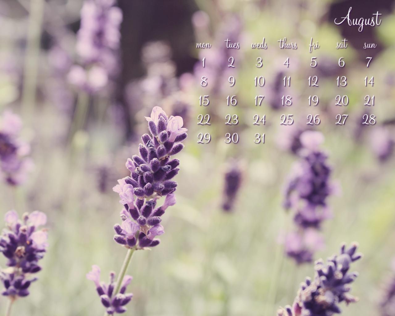 http://1.bp.blogspot.com/--Hsj0qhUPeM/TjdcMGgN5jI/AAAAAAAADyY/8r-sWF7TJWY/s1600/August-Lavender-1280x1024.jpg