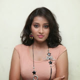Bhanu Sri Hot Photos at Veedi Pourusham Movie Press Meet 27