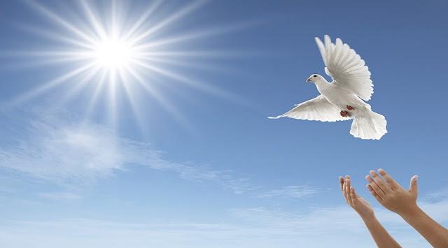 Meus 10 Versículos Bíblicos Favoritos Sobre A Paz