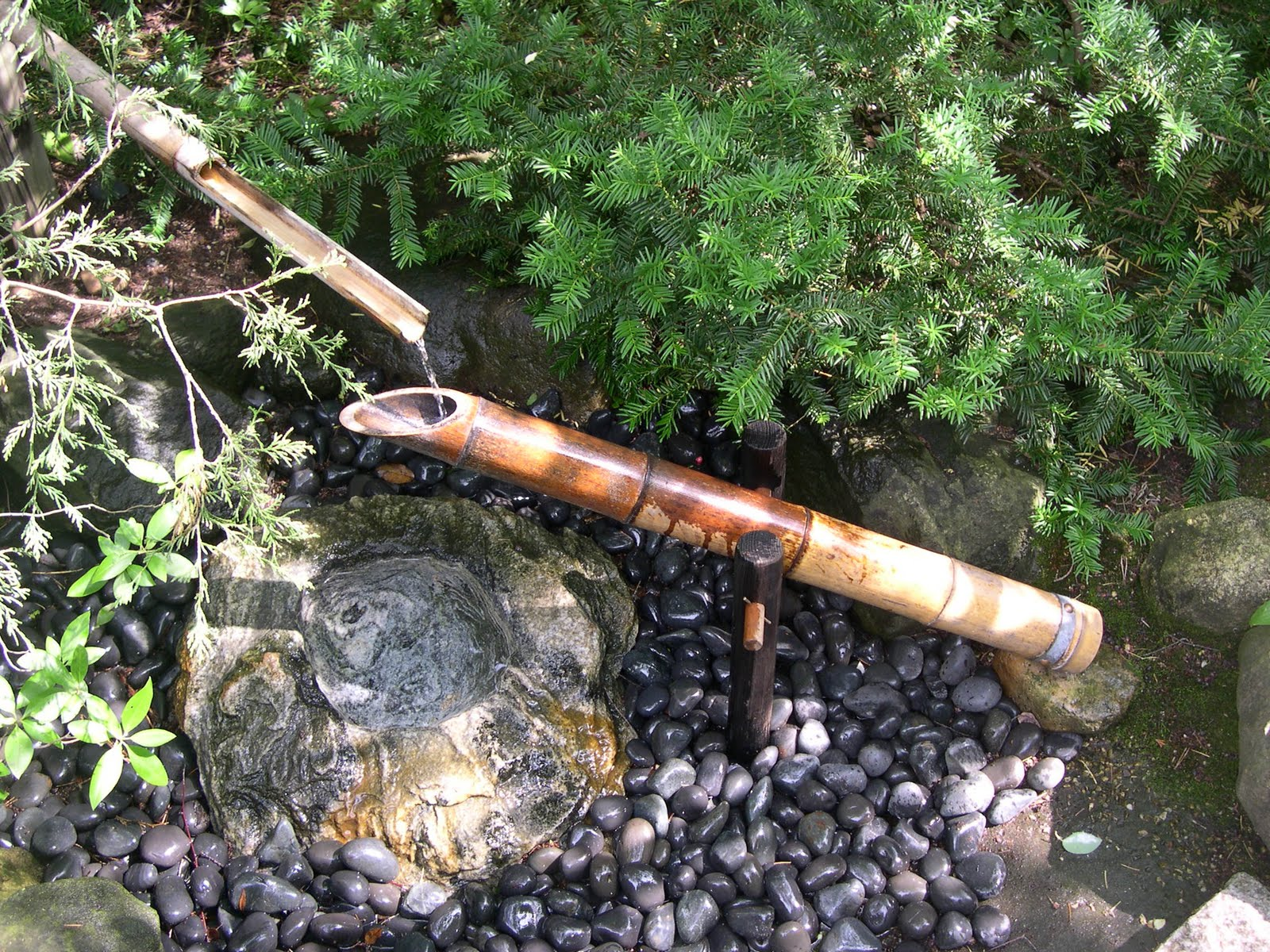 Been there seen that a shishi odoshi for all to see for Japanese bamboo water feature