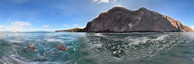 Vicente Roca Point, Isabela Island, Galapagos
