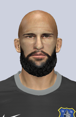 PES 2014 Tim Howard Face by Gonduras2012