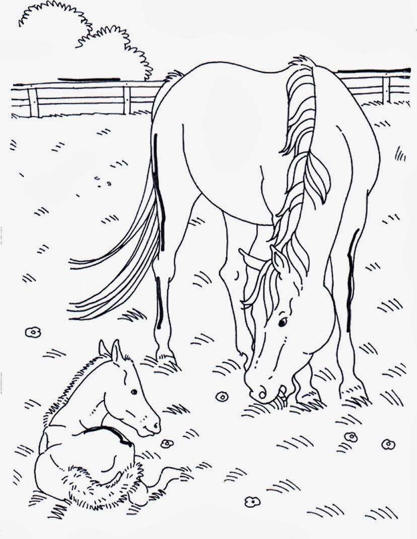 Disegni da colorare cavallo for Disegni di cavalli da stampare e colorare