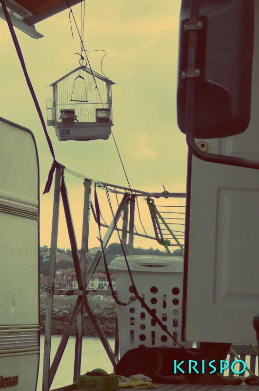 jaula vacía y caravana de feriantes