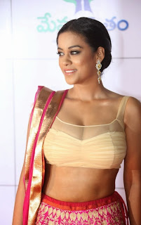 Actress Mumaith Khan  Picture Gallery in Half Saree at Memu Saitam Dinner with Stars Red Carpet  2.jpg
