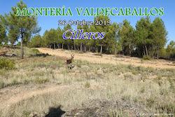 MONTERÍA VALDECABALLOS 2019