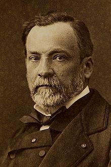 Louise Pasteur