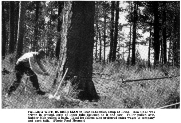 Tree felling with rubber man