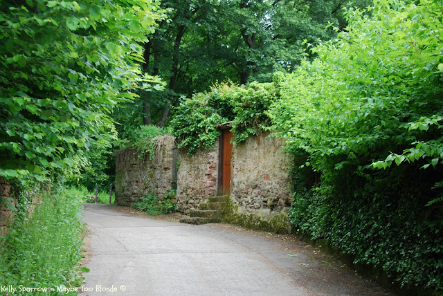 Philosophenweg, Heidelberg, Germany, Philosopher's Way