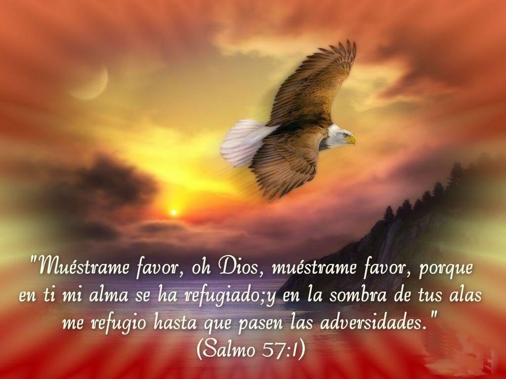 tus alas Dios