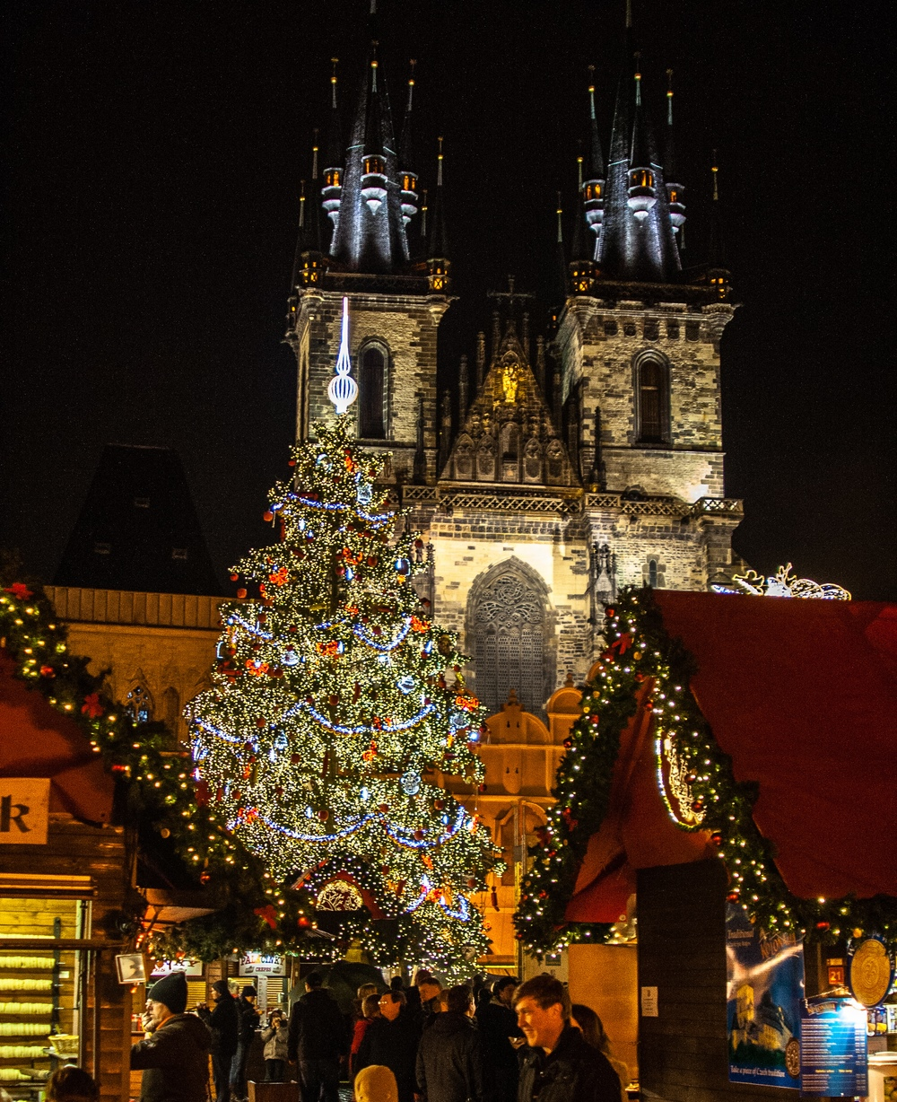 Let 39 s travel the world 10 most beautiful christmas trees for Most beautiful christmas photos