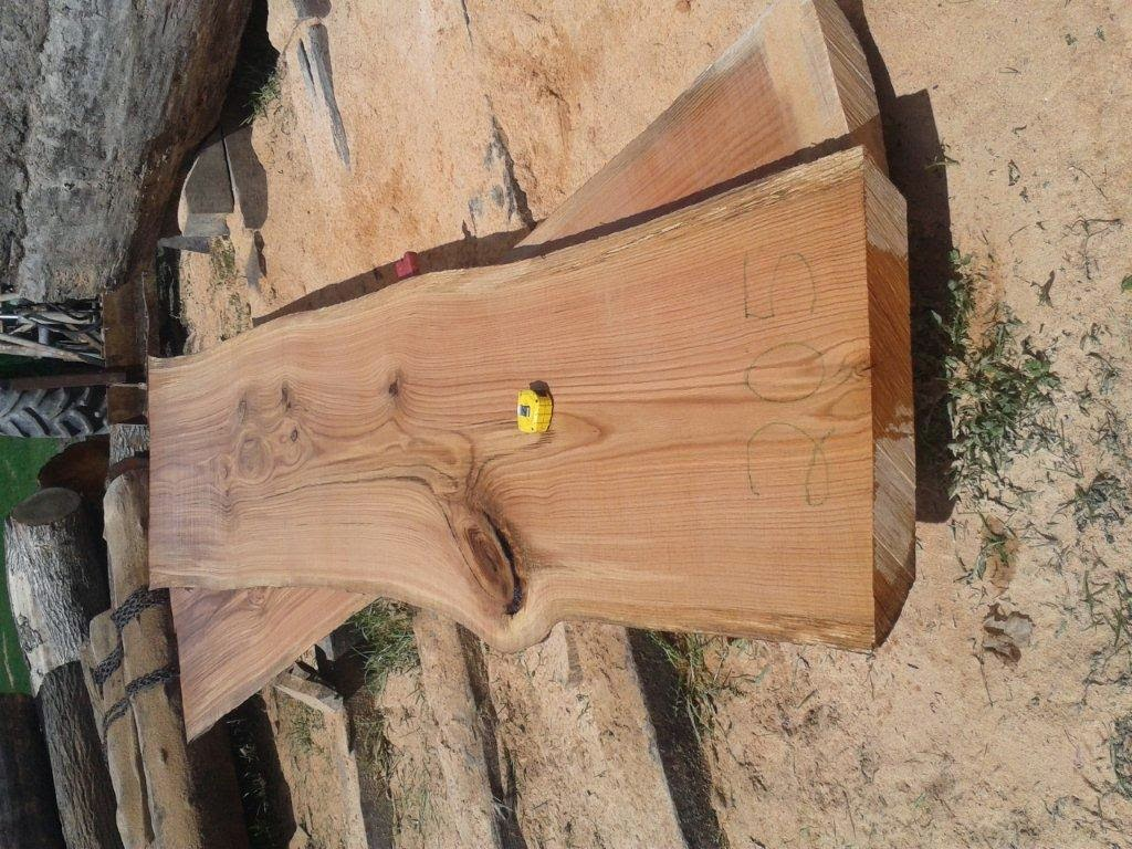 A027 2 d 39 pais x 18 1 4 t te x 18 1 4 base x 18 1 4 - Tranche d arbre a vendre ...