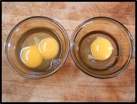 Savoir faire conserver pas de jaune deux jaune pas de coquille ou normal oeuf de poule - Coquille d oeuf dans le jardin ...