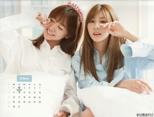 Apink calendar 2015