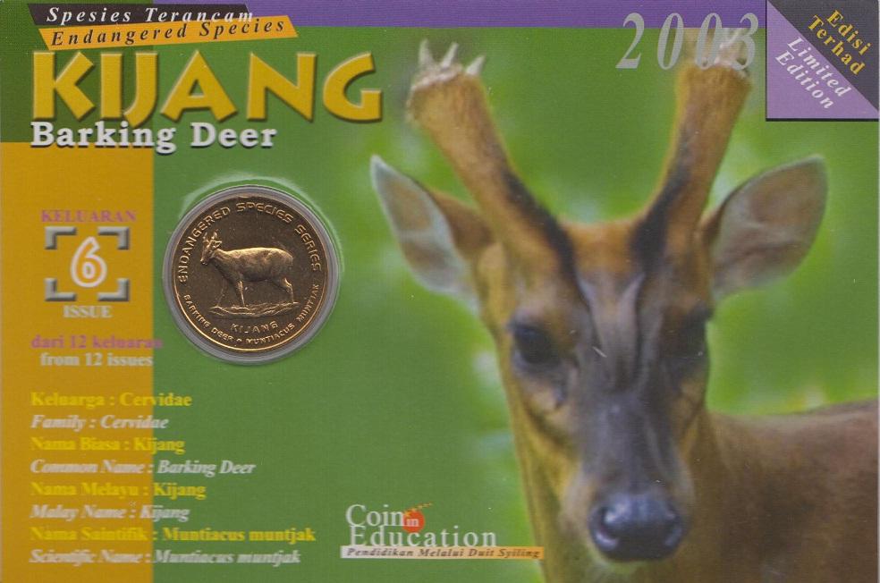 Image result for haiwan kijang
