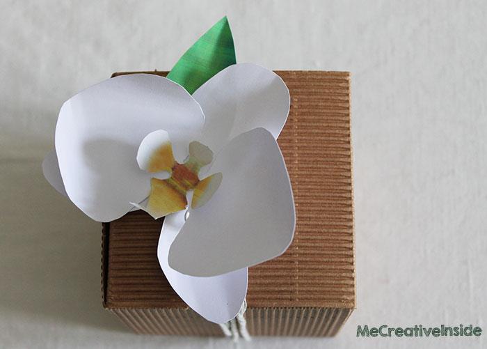 Orchidea di carta me creativeinside - Come curare un orchidea in casa ...