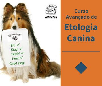 Curso Avançado de Etologia Canina.