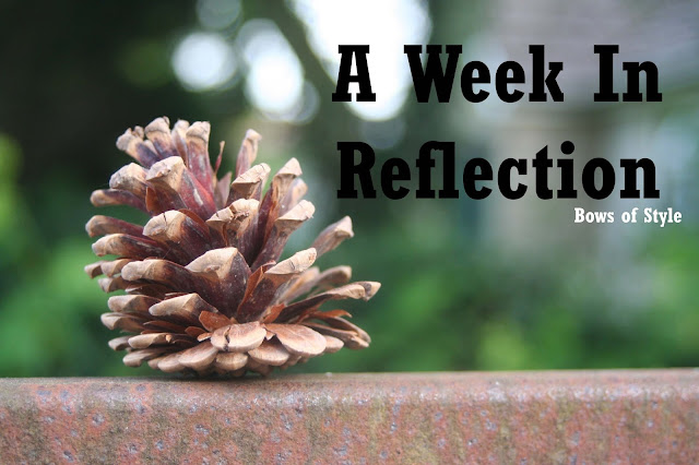 week 1 reflection