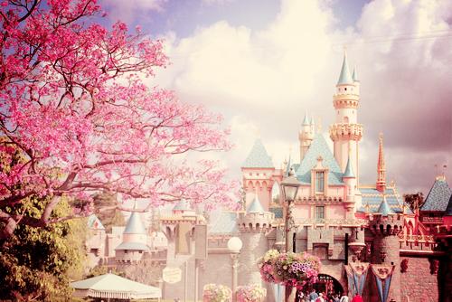 Nincs szőke herceg fehér lovon és nincs Happy and! Ez a valóság, s nem Disneyland...!