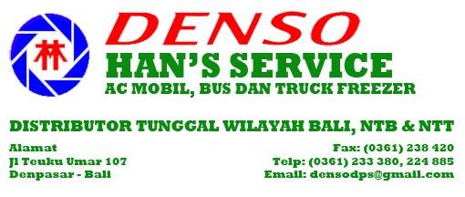 Han's Service Denso