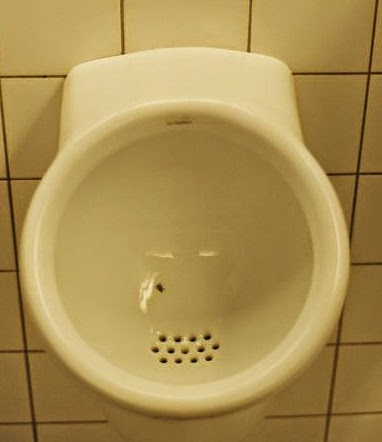 Fly in Schiphol's toilet