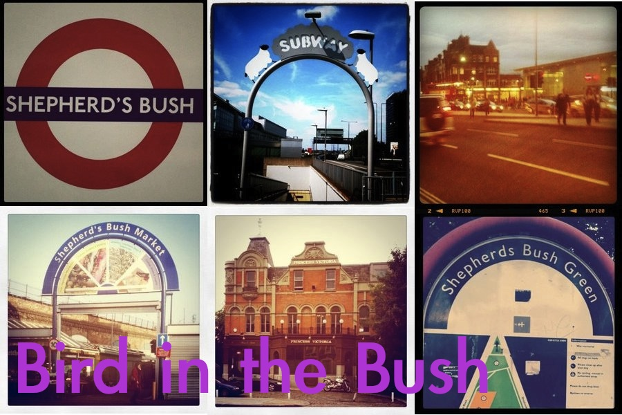 Bird in the Bush - A blog about life in Shepherd's Bush