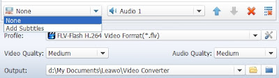 MKV to FLV converter subtitles
