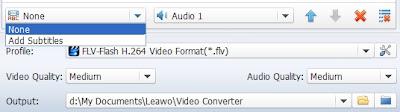 MKV to FLV converter subtitles