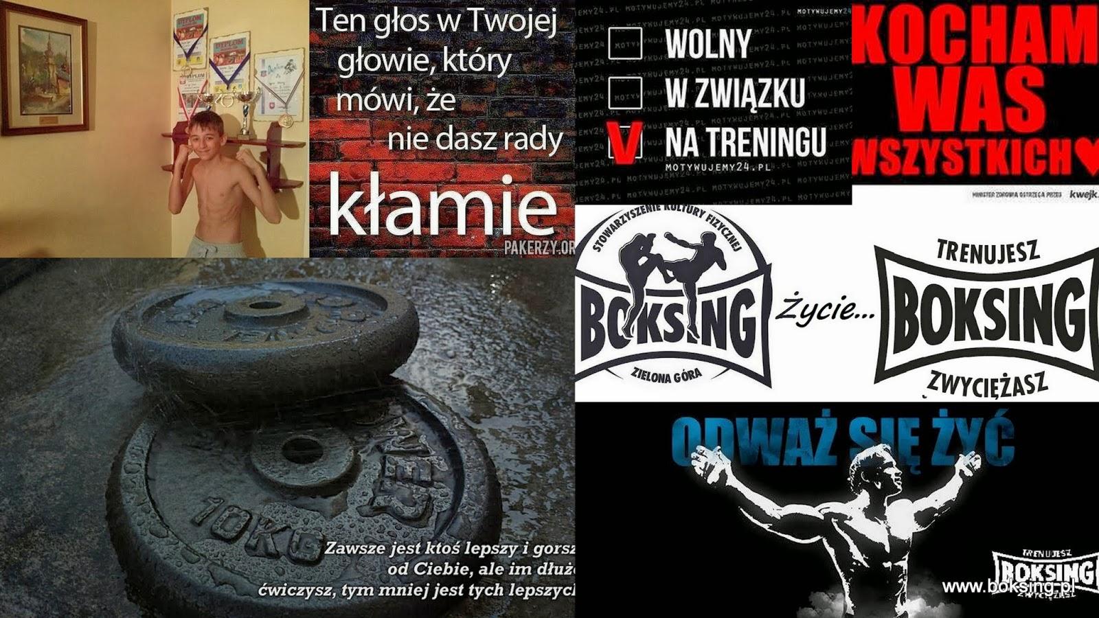 ambasador, kickboxing, klub, sport, trening,