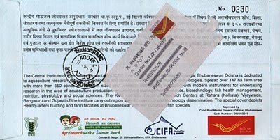 Special cover back
