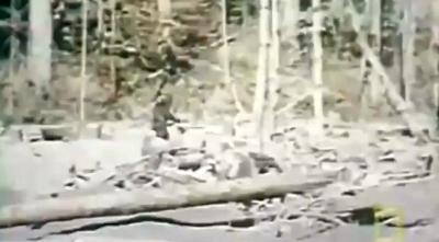 Real Life Myth Bigfoot