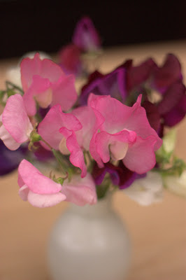 A vase of pink and purple sweet peas