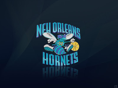 Charlotte Hornets Wallpaper Larry Johnson 1280 800 Pixels