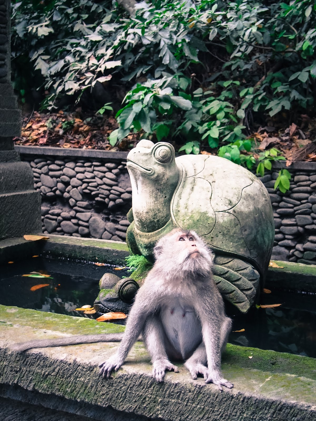 Matkablogini: Elefanttikassin matkassa
