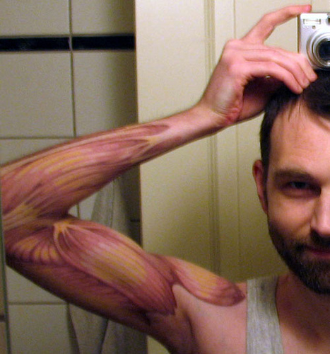 Anatomy Tattoo On Arm Concept For Male
