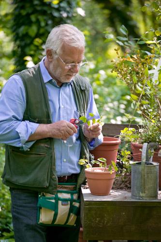 Il mondo in un giardino le stagioni del maestro giardiniere for Donare un giardiniere