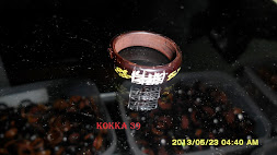 KOKKA 39