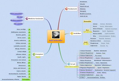 Mappa mentale dell'intero corso sui sali di Schussler