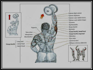 One Arm Triceps Extension
