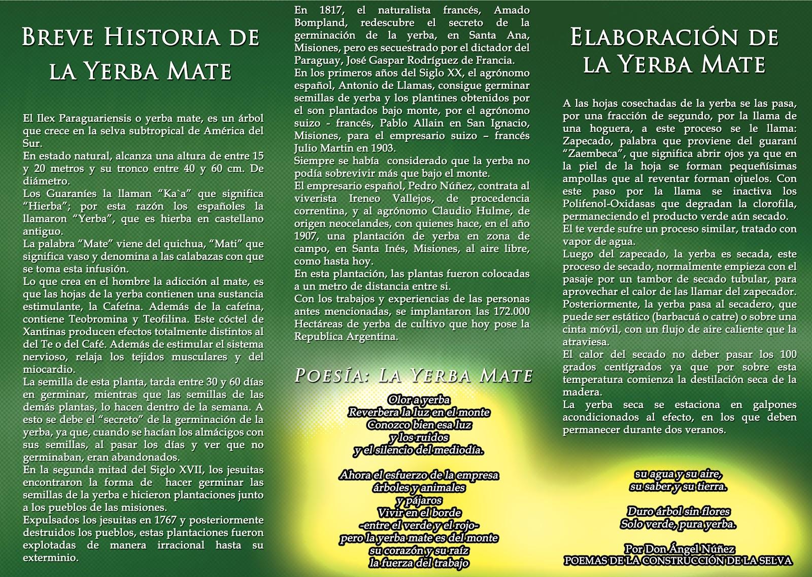 Circuito Yerba Mate : Noticias de la ruta de la yerba mate era cata con historia